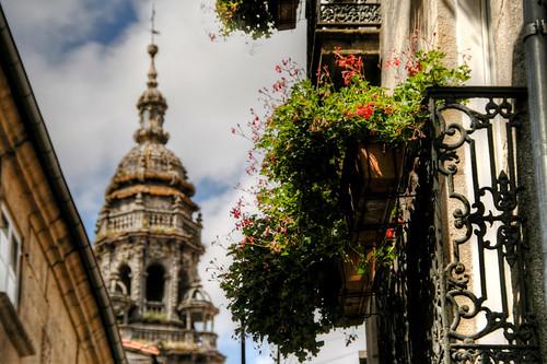 Flowers and tower. Santiago de Compostela. Flores y Torre