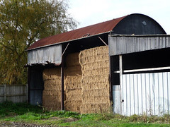 James A R Main - Hay Shed