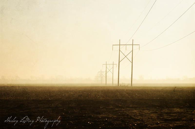 Prairie Lines