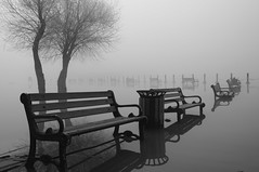 Let the water rise (Artun York) Tags: lake reflection tree fog turkey bench blackwhite pentax ngc lakes banco bank sis ankara niebla turquia mogan blanconegro aa gl yansma k7 siyahbeyaz glba
