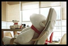 _DSF0038b copy (mingthein) Tags: bear home toy fuji availablelight plush malaysia finepix fujifilm kuala polar nici kl ming lumpur x100 onn thein photohorologer mingtheincom