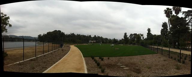 Meadow panorama