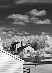 Backyard Infrared (Excaliber2013) Tags: blackandwhite white black 20d clouds contrast ir afternoon connecticut surreal canoneos20d infrared bethel falsecolor canonef50mmf18ii 720nm lifepixel