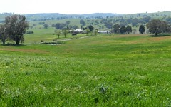 Lot 1 Sylvia Vale Road, Binda NSW