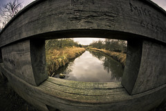 Bridge View (MakeLifeMemorable) Tags: life bridge test fish eye make river lens photo emily day cloudy shots 1987 sony flash may testing fisheye example sankey le valley spencer alpha 8mm willows newton merseyside memorable a230 earlestown muhly samyang havannah makelifememorable lonegungrrly