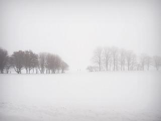 雾/Fog