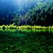 Grass Lake (草海, Cǎo Hǎi)