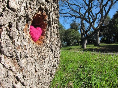 love yarn bomb