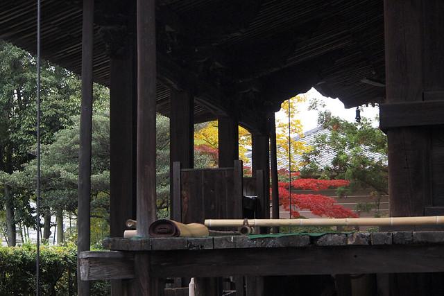 20101114_095336_西大寺