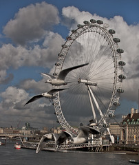 Birds Eye View (pandawizard) Tags: blue seagulls motion london eye birds thames clouds river prime pentax gulls 14 sigma londoneye ist ds2 30mm pentaxistds2
