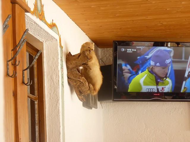TV in der Kreuzalm, Ski-WM, Tag 7, oben zum Skifahren
