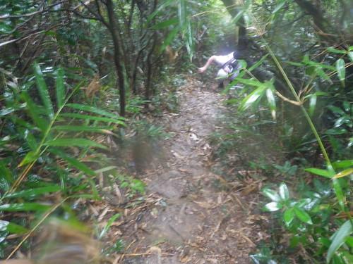 13/02/2011 KOTH Hong Kong Island Mountain Marathon