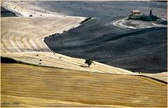 I REMEMBER ... YESTERDAY (mauro855) Tags: natura siena pienza toscana valdorcia paesaggi 2010 panorami supershot nikond60 abigfave impressedbeauty mauronizzi mygearandme magicavalle