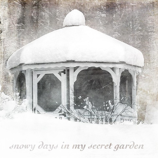 snoy days in my secret garden