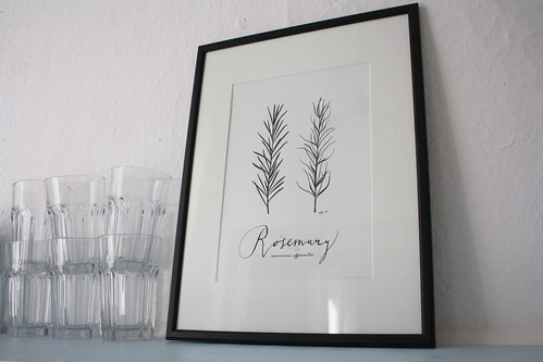 Rosemary_in_the_kitchen