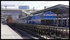 SPJ WDM3a & KJM WDP4 (Pramath S.B) Tags: train ir engine loco alco indianrailways wdp emd diesellocomotive wdm irfca wdm3a wdp4 kjmwdp4 gt46pac