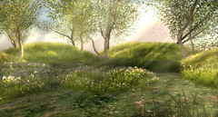Komorebi (La Bouchre) Tags: voyage flowers trees shadow sky sun nature beautiful grass fleurs french japanese soleil 3d spring place awesome avatar jardin peaceful sl ciel secondlife parcel exploration printemps beau herbe rayoflight komorebi gardin paisible rayondelumire