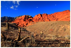 Red Rock Canyon (Chris Odchigue | Photography) Tags: park las vegas red mountain rock canon landscape eos desert mark nevada canyon national ii calico 5d usm wilderness barren ef arid preservation wasteland blm 2470mm 28l tc80n3
