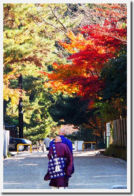 20101116_095343_興福寺