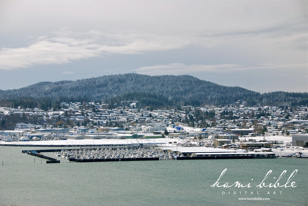 Anacortes Marina with Mount Erie behind (with the towers on top.)