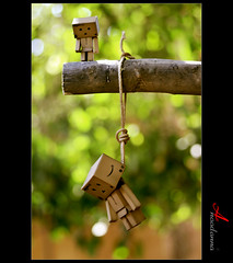 I need you daddy .. (ANOODONNA) Tags: tree daddy you suicide need died danbo   sigma105mmf28exdgmacro i canoneos50d danboard  anoodonna  alanoodalrasheed ineedyoudaddy