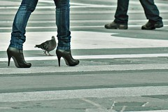 Pigeon II (Ktoine) Tags: italy sexy feet leather square italia pigeon milano jeans heels curious duomo curiosity