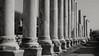 Apofige 7 (Zia Principessa) Tags: art archaeology turkey ruins arte kunst marble remain colonne marbre rovine turchia marmo marmor perge archeologia ruderi