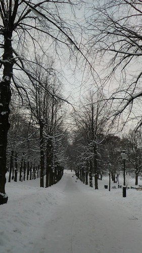 Studie i vitt, Humlegården Stockholm