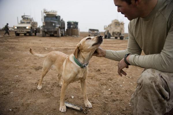 AFP-Kostyukov-Afghanistan-481