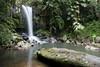 Curtis Falls (aardvaarkau) Tags: water creek waterfall nationalpark queensland digitalcameraclub cotcpersonalfavorite tamborinemtn