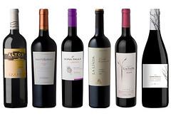10 vinos tintos para que descubras