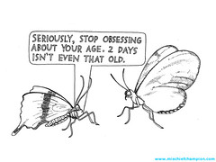 Seriously (mischiefchampion) Tags: animals illustration comic drawing humor butterflies mischiefchampion