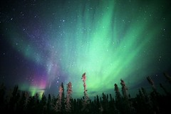 Eagle Plains Aurora (David Cartier) Tags: yukon aurora northernlights eagleplains