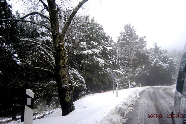Gran Canaria - neve 2011