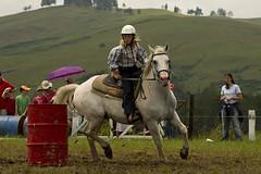 Ukarumpa Horse Shoe (The PNG Scotts) Tags: horse png papuanewguinea sil ukarumpa