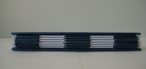 blue chicken book  -- spine