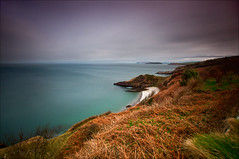 'View From Above' - White Beach, Llangoed (Kristofer Williams) Tags: white seascape beach landscape sony hidden ferns whitebeach ynysmon anglesey northwales llangoed a550