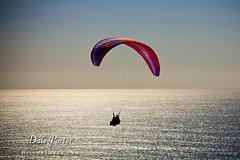 IMG_301_Paraglider_201103