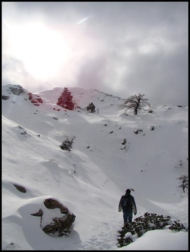 Ruta Torrecilla (34)