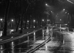 Runners in Central Park (grantfriedman) Tags: nyc newyorkcity snow newyork rain night spring darkness centralpark parks runners