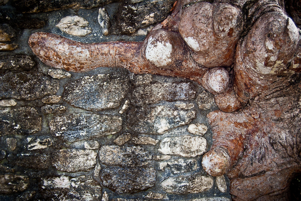 Acropolis_Wall