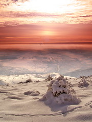 (Alin B.) Tags: winter sunset sky cloud snow cold ice nature frozen alinb