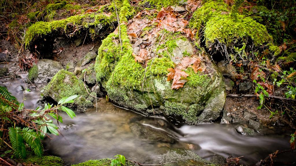 Rocky Stream 3