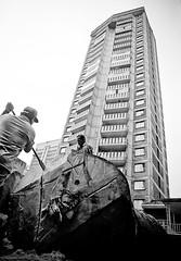Las últimas Ceibas (alejocock) Tags: photographer colombian acock alejocock httpsurealidadblogspotcom alejandrocock