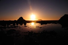 And the day ends (Vineesh Devasia) Tags: park ca national redwood top20sunsetsofourhearts