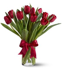 "#06V Tulips 10/$35 12/$40 18/$50 • <a style=""font-size:0.8em;"" href=""http://www.flickr.com/photos/39372067@N08/5402394751/"" target=""_blank"">View on Flickr</a>"