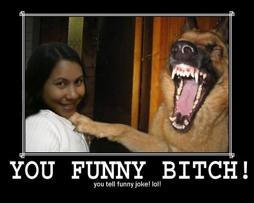 funny bitch