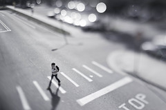 Crossing (ethics_gradient) Tags: girl tampa florida bokeh walk sony stop intersection 20mm nikkor crosswalk usf f28 ts stride tiltshift universityofsouthflorida nex3 sonynex3