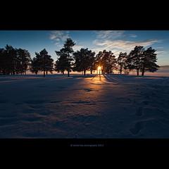 it's all about sun.. again ;-) (stella-mia) Tags: pink winter sunset orange sun snow yellow norway lensflare hamar snø hedmark 2470mm domkirkeodden hightlight hedmarksmuseet canon5dmkii annakrømcke