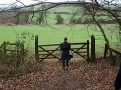 In A Field Far Away (Lizzio) Tags: wood autumn friends girl field leaves forest fence dark photography leaf bush woods gate branch cut branches off calm mysterious stare fields tall isolated daunting